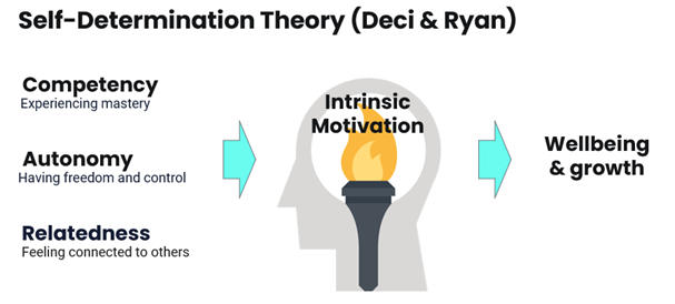 Self-determination theory is a useful framework for improving survey response rates