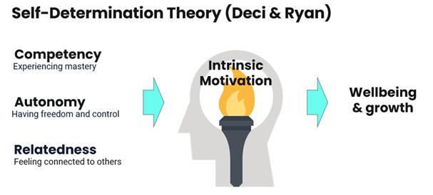 Basic Psychological Needs that facilitate Intrinsic Motivation