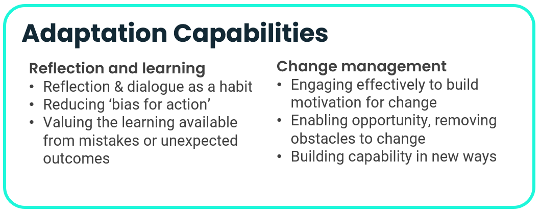 Adaptation capabilities underpinning organisational resilience - reflecting and learning, and managing change
